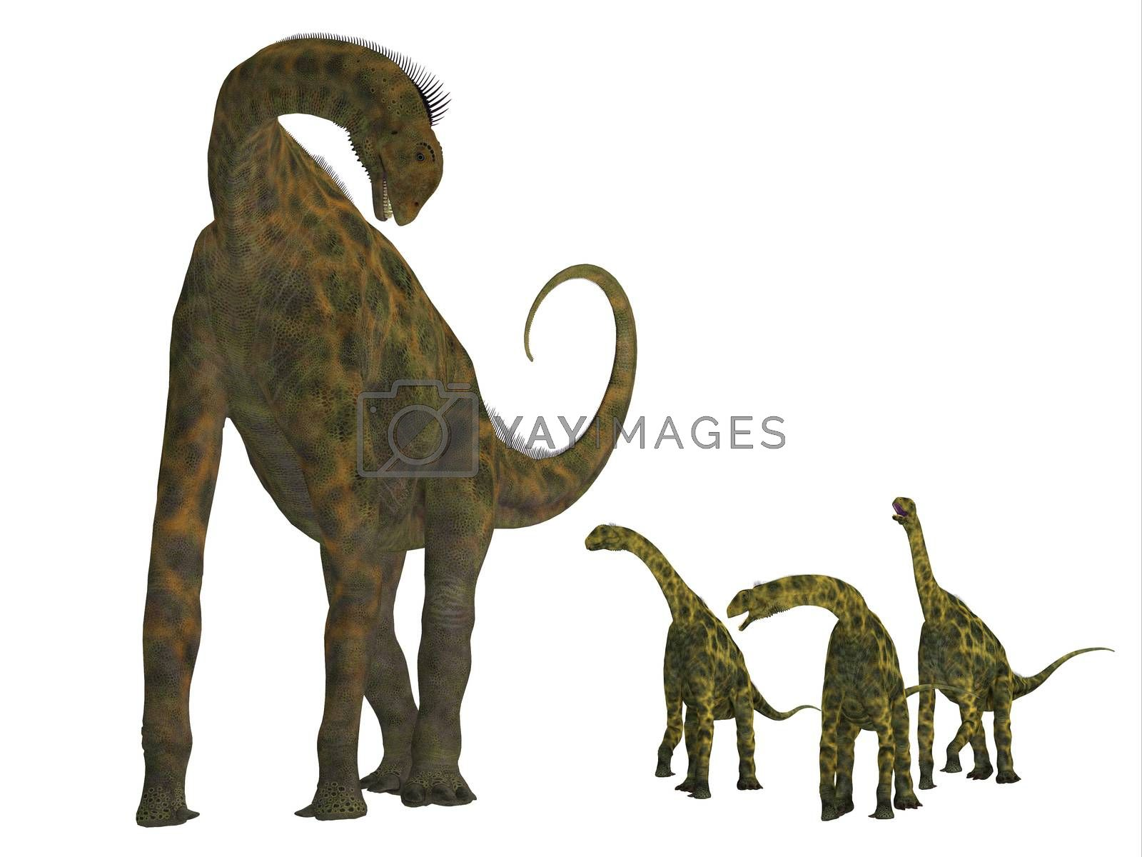Atlasaurus was a large herbivorous dinosaur that lived in the Jurassic Period of Morocco, North Africa.