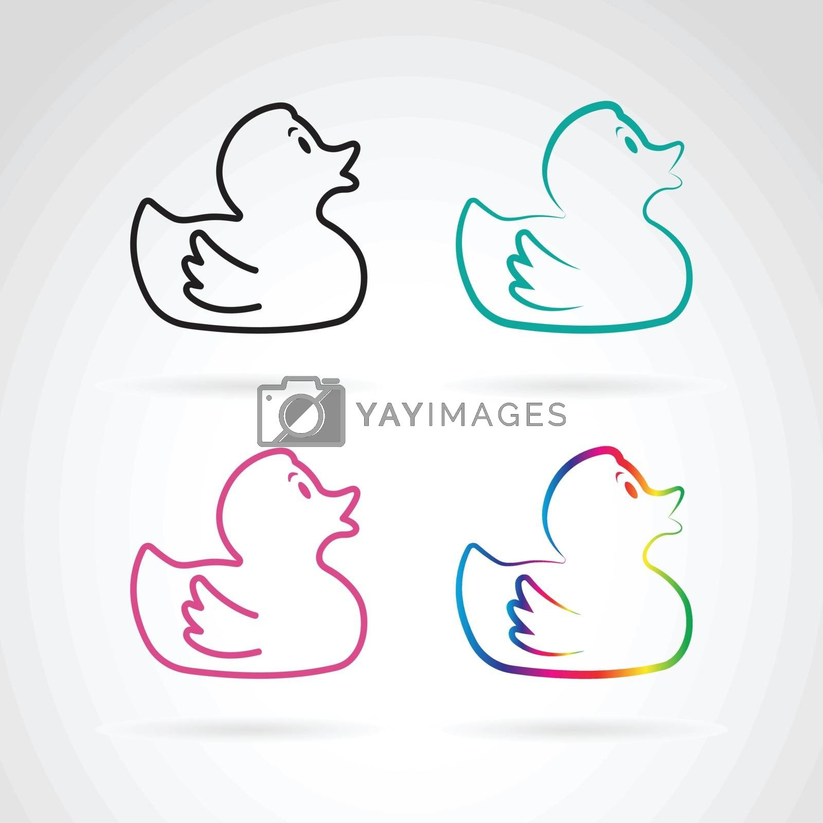 Vector image of duckling design on white  background