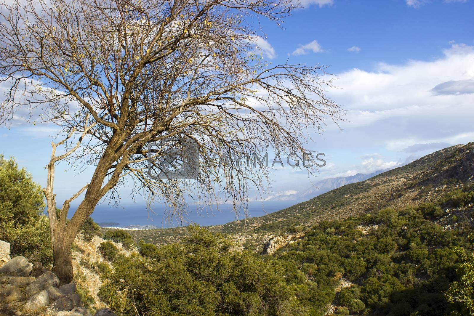 Lato, ancient city on the island of Crete, view of the sea