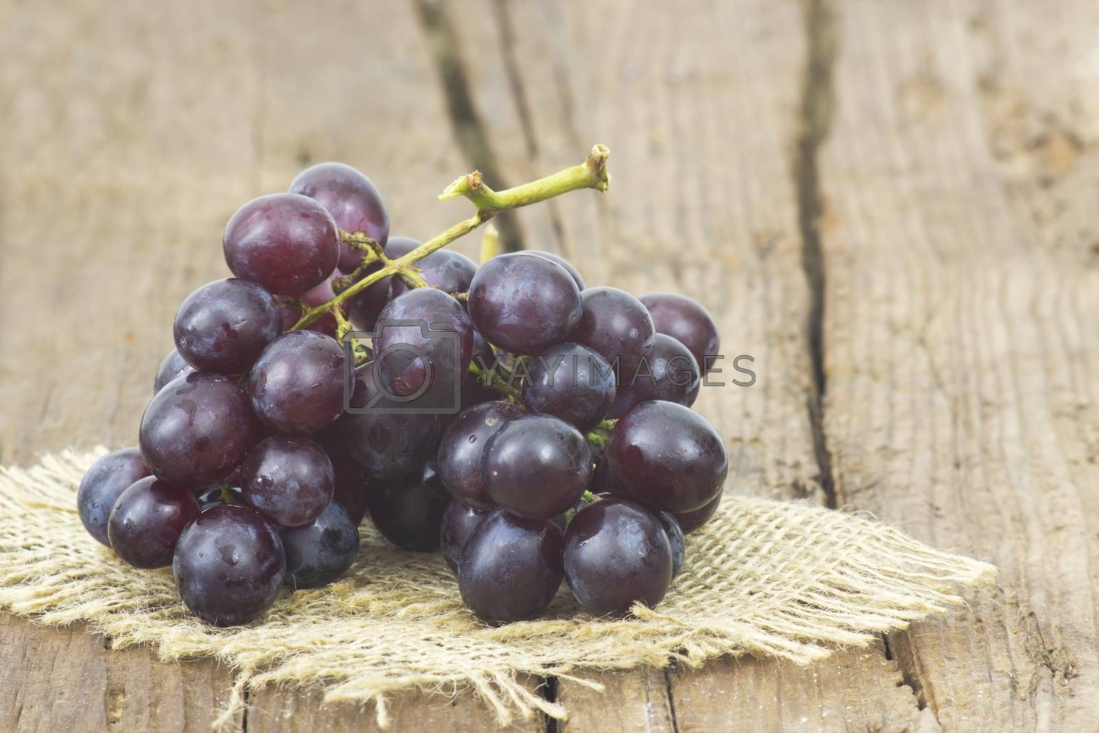 grapes on old wooden background