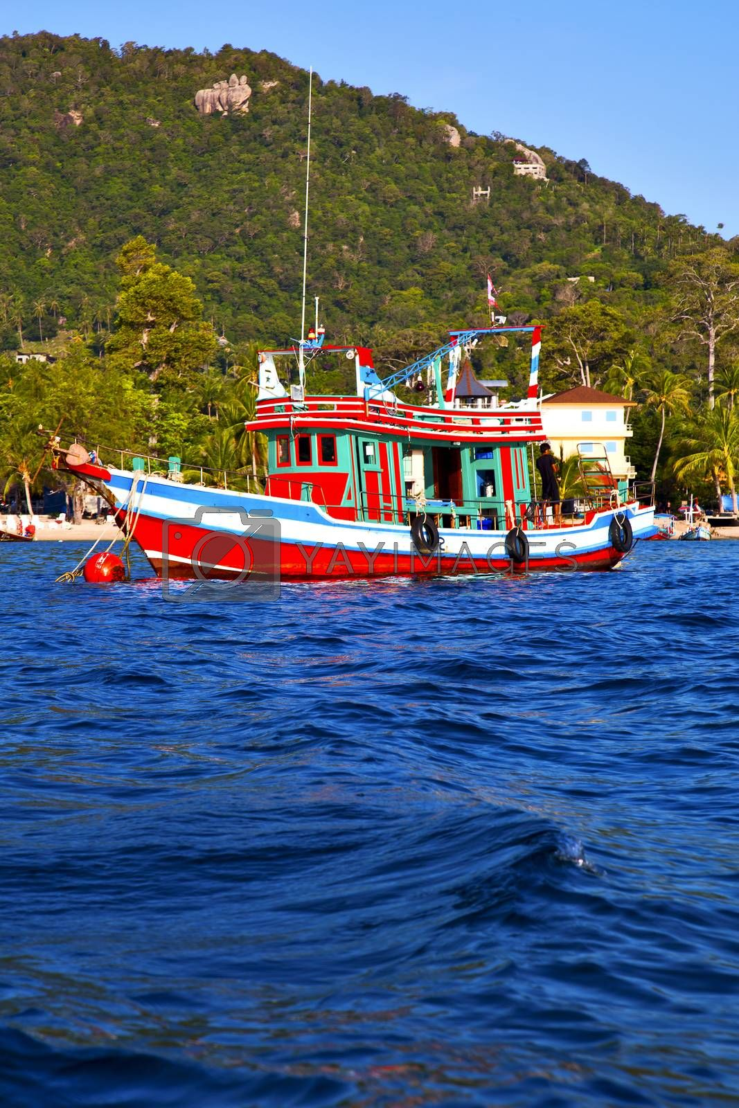 asia in the  kho tao bay isle white  beach    rocks  boat   thailand  and south china sea anchor
