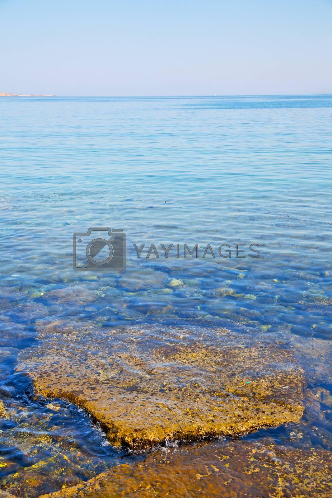 stone in the coastline sunrise and light ocean        white sky