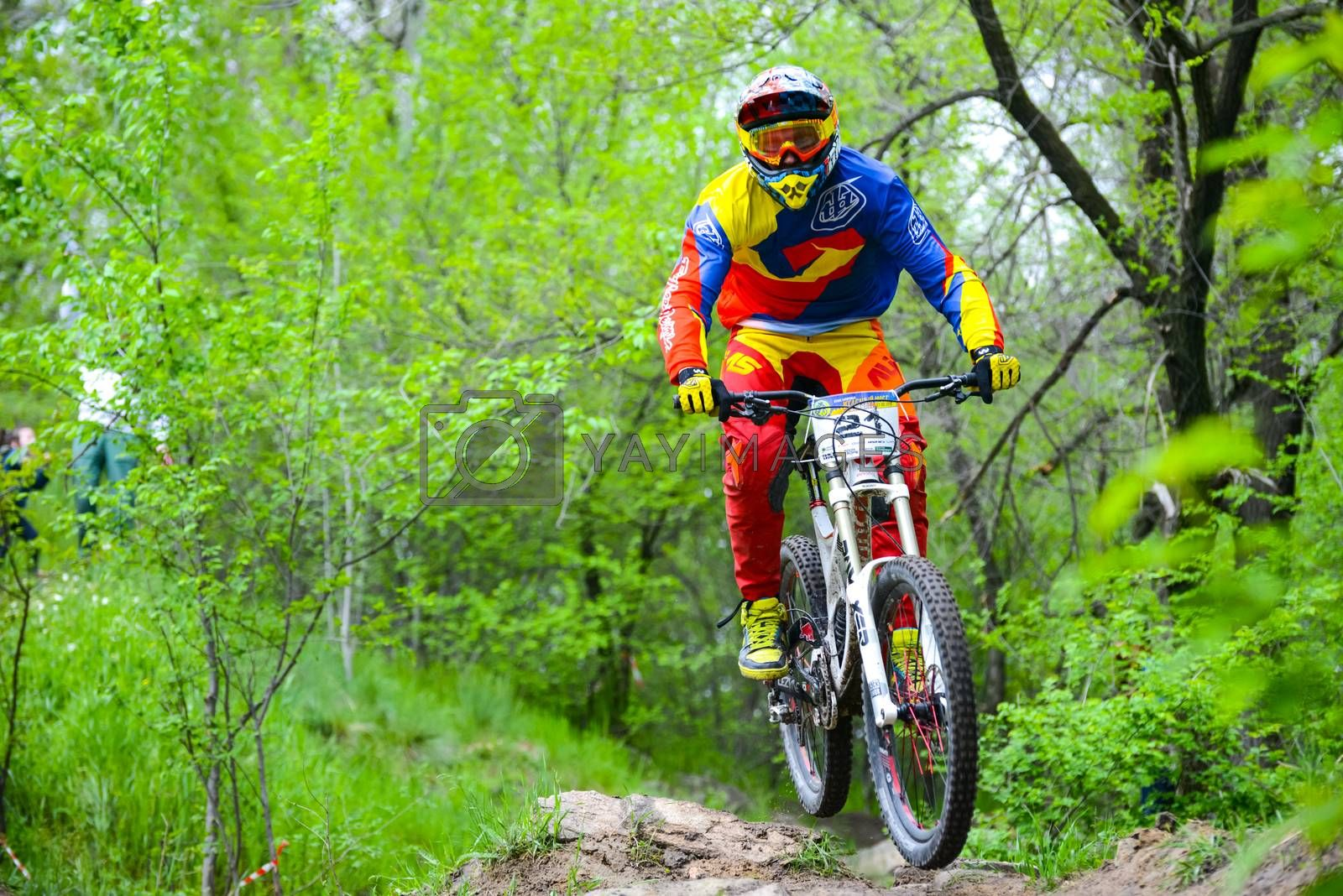 ZAPORIZHZHYA, UKRAINE - MAY 03, 2015: Professional DH Biker is Riding a Mountain Bike on the Trail of Khortytsya Island During the Iron Bridge Competition, a Stage of Downhill Ukrainian Cup. Extreme Sports
