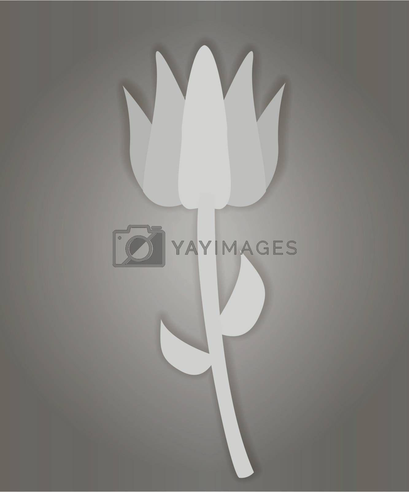 Grey flower on the grey background