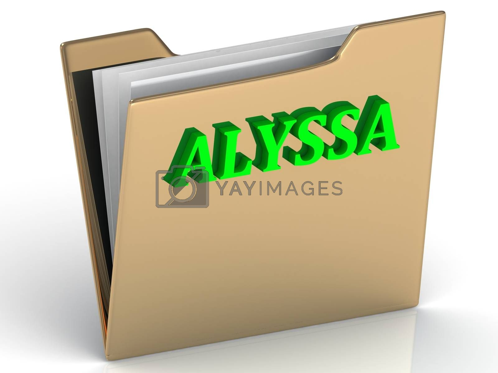 ALYSSA- bright green letters on gold paperwork folder on a white background
