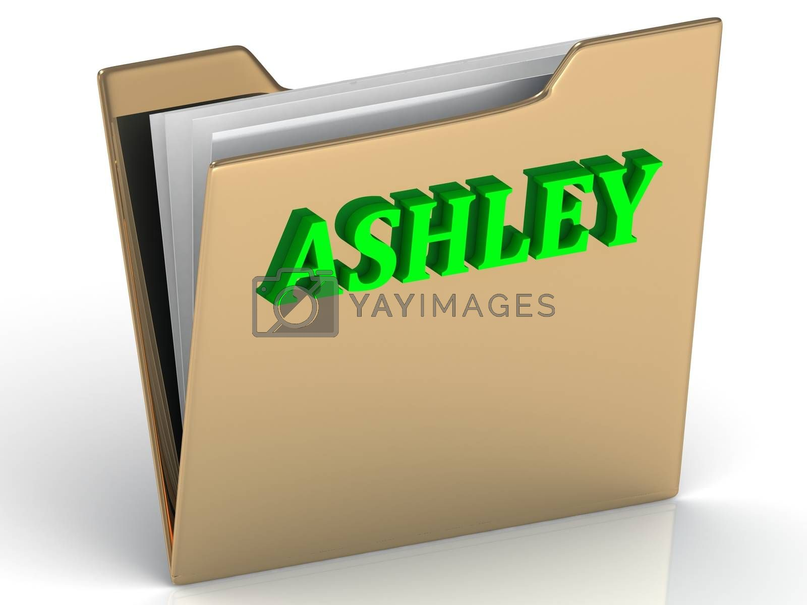 ASHLEY- bright green letters on gold paperwork folder on a white background