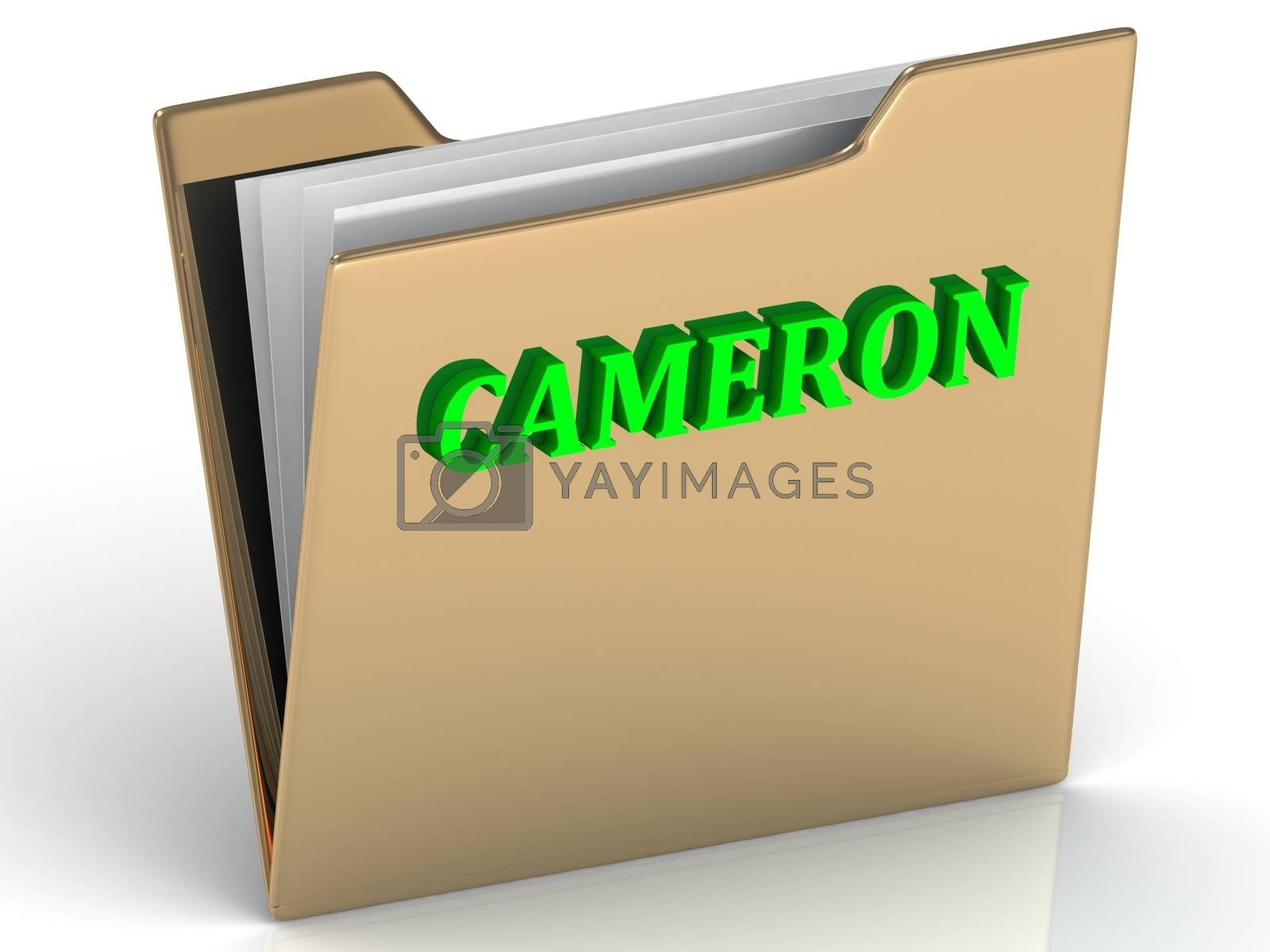 CAMERON- bright green letters on gold paperwork folder on a white background