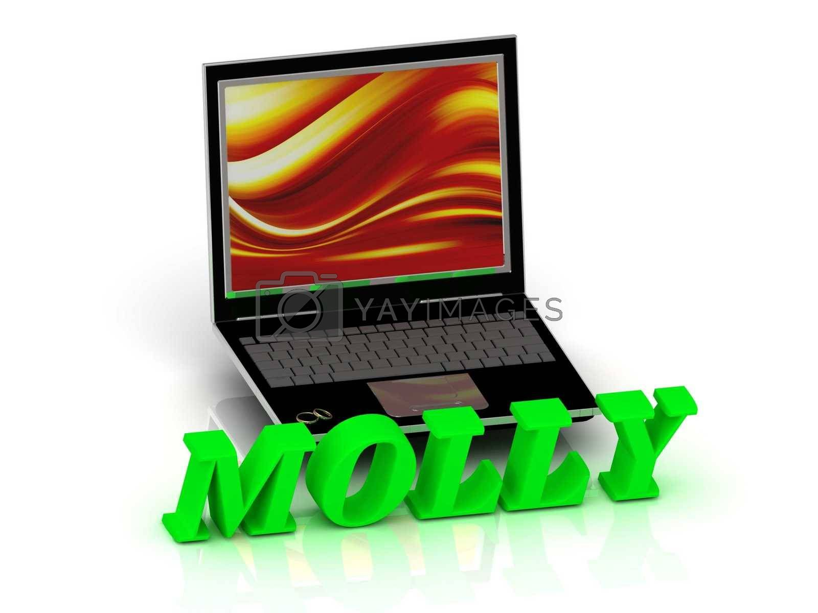 MOLLY- Name and Family bright letters near Notebook and  inscription Dating on a white background