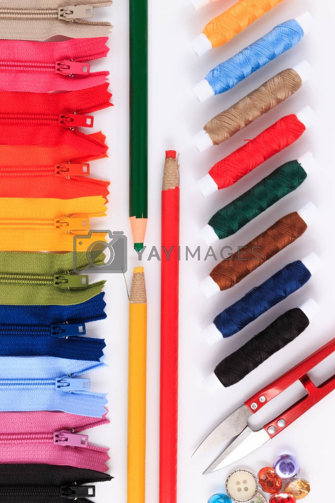 Red scissors, pencil and buttons on colorful zippers in different colors.