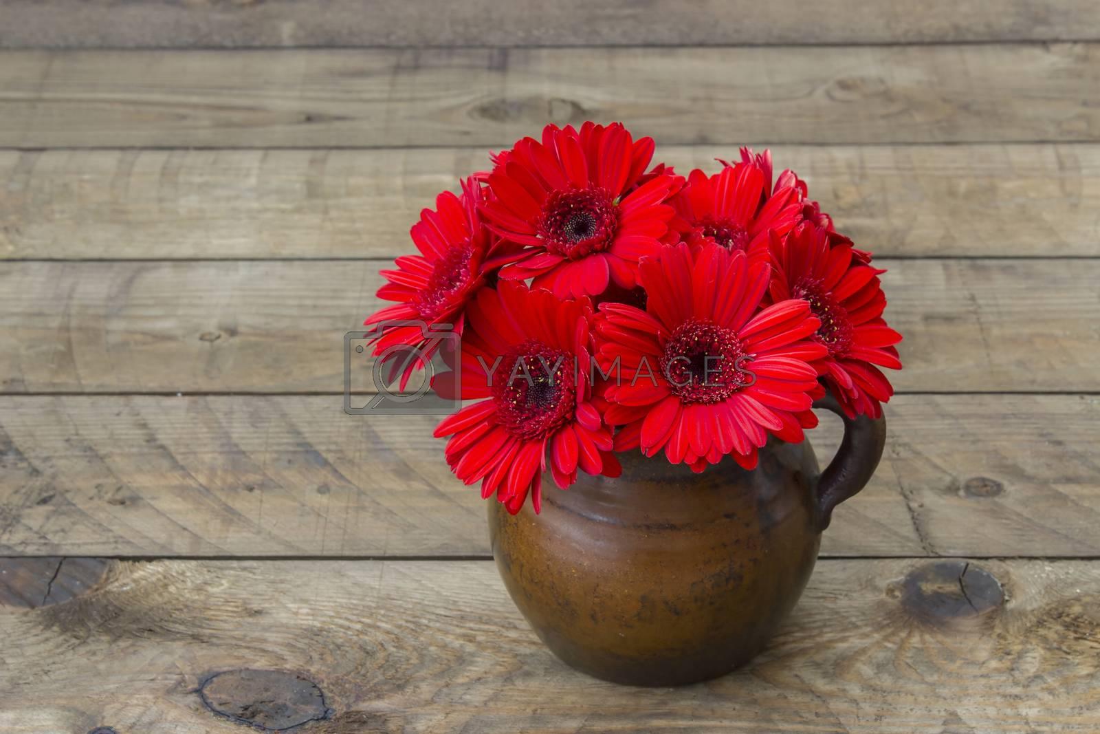 red gerbera flowers in a vase