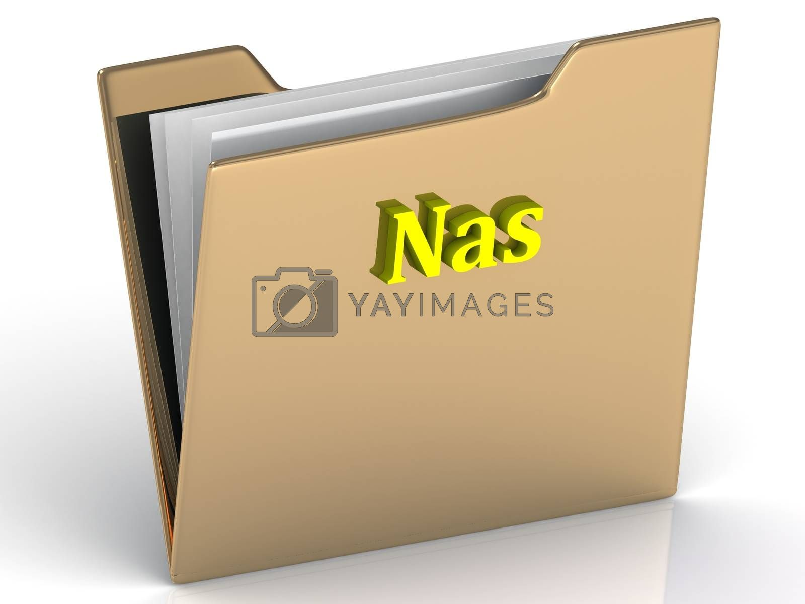Nas- bright color letters on a gold folder on a white background