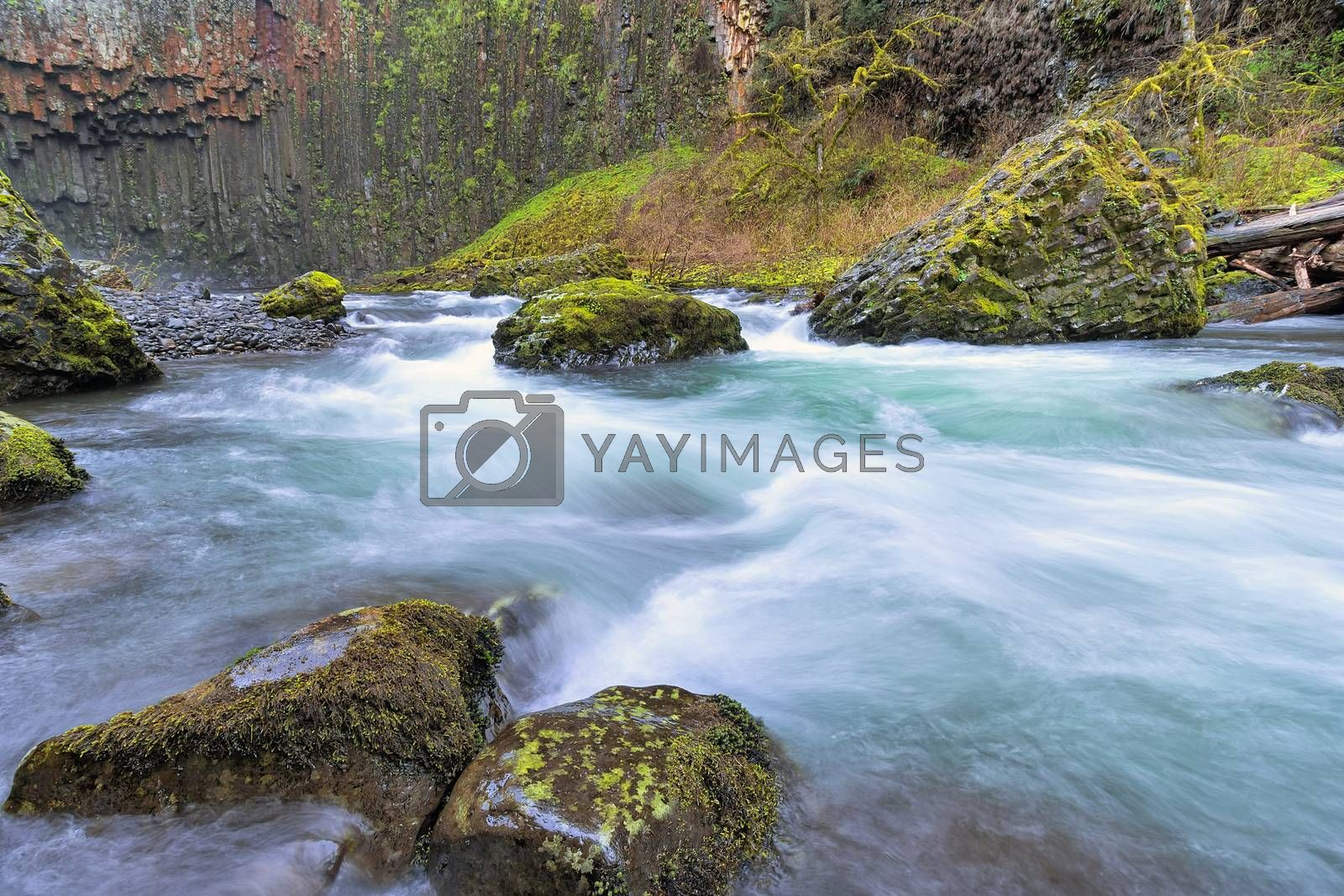 Abiqua Creek in Marion County Oregon in Springtime