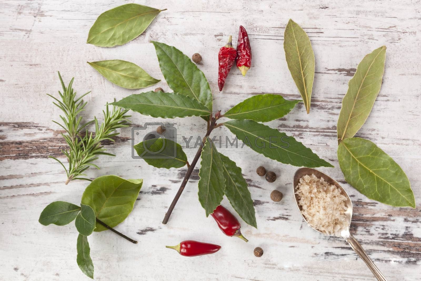 Bay leaves, traditional spice and condiment on white wooden background. Bay leaves, rosemary, chillies and black pepper on white wooden table, top view.