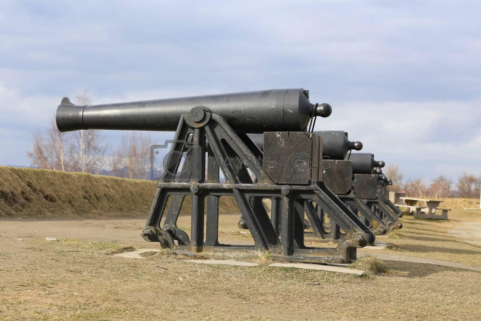 Rundtur i Trondheim en vårdag - Kanoner på Kristiansten fesning