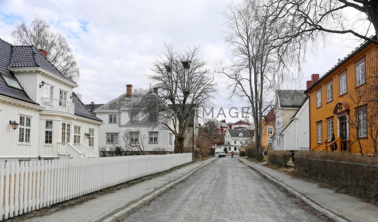 Rundtur i Trondheim en vårdag - Singsaker
