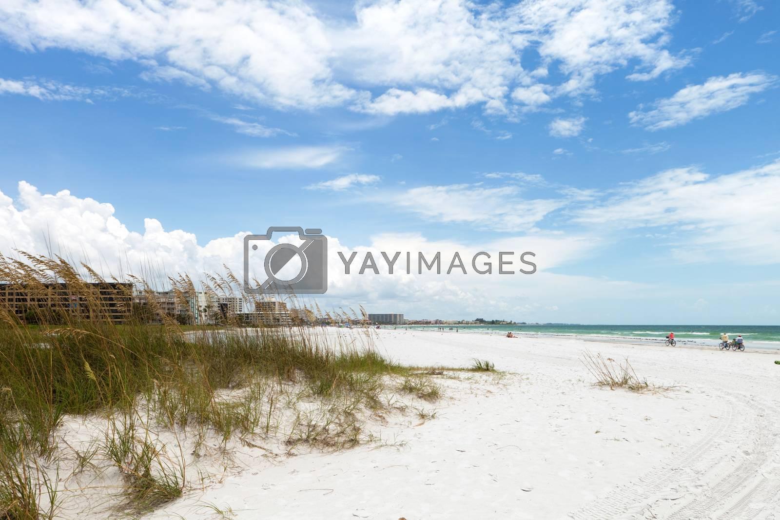 Royalty free image of Siesta Key Beach Sarasota Florida by graficallyminded