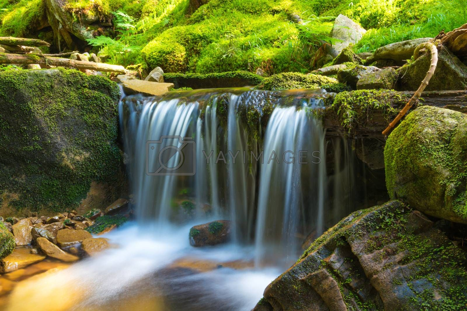 Waterfall in the forest by vapi