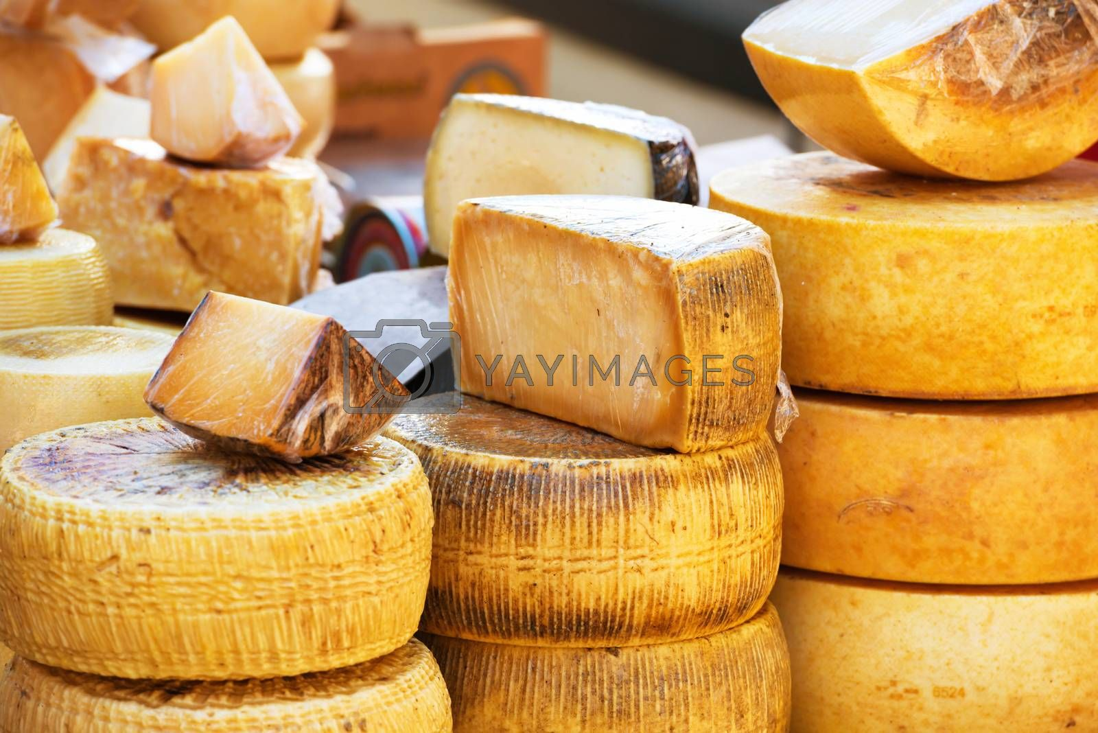 Different sorts of italian cheese by vapi