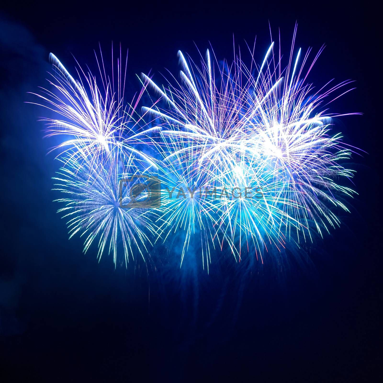 Beautiful colorful blue holiday fireworks on the black sky background