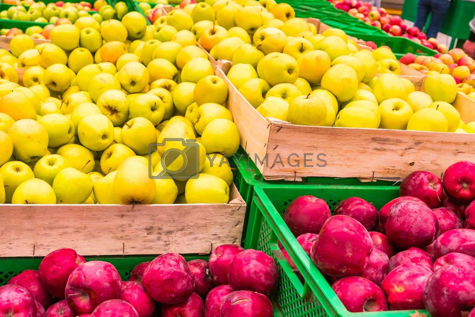 Red and yellow fresh apples in a wooden crates at farmers market