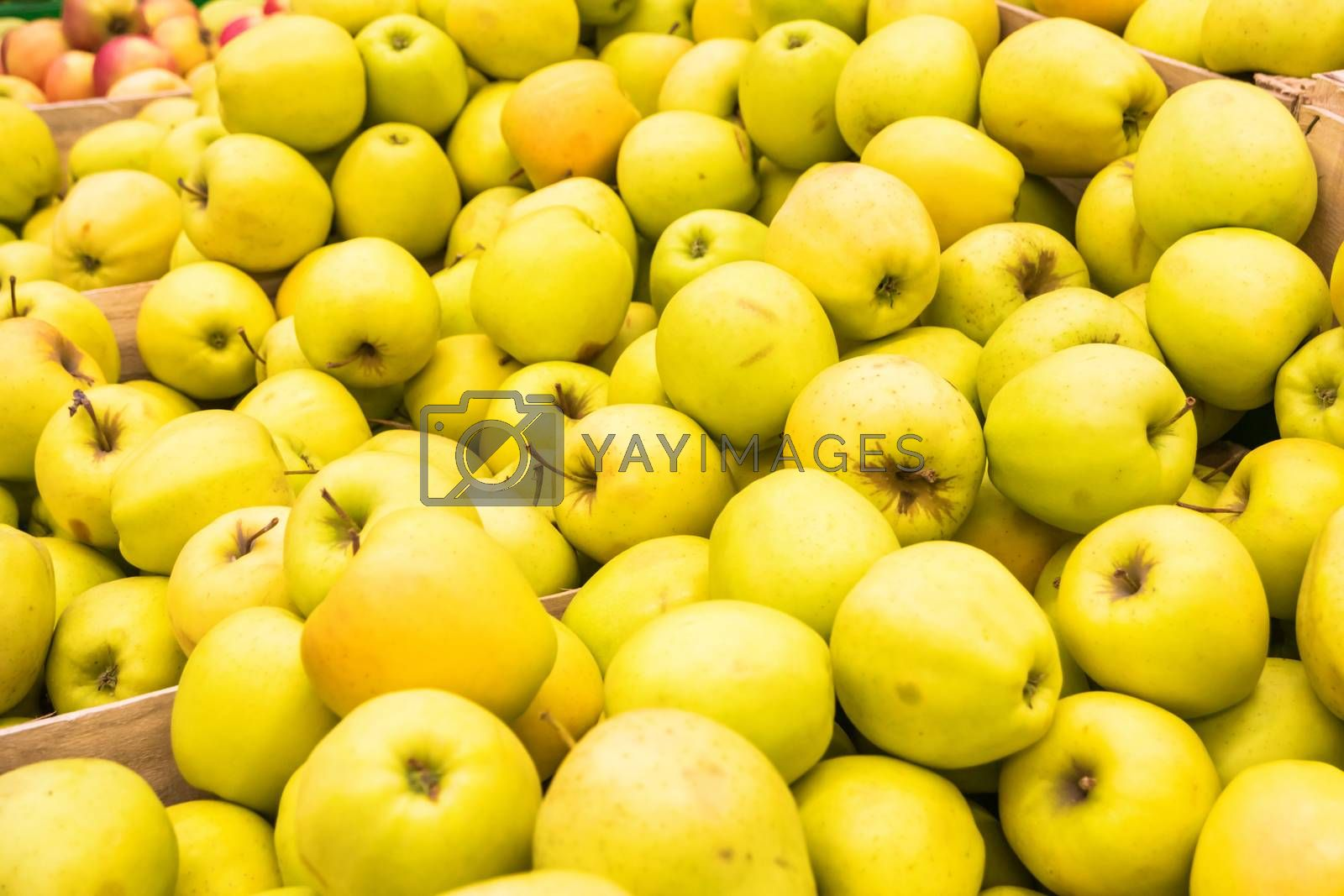 Pile of yellow fresh apples in a wooden crates at farmers market