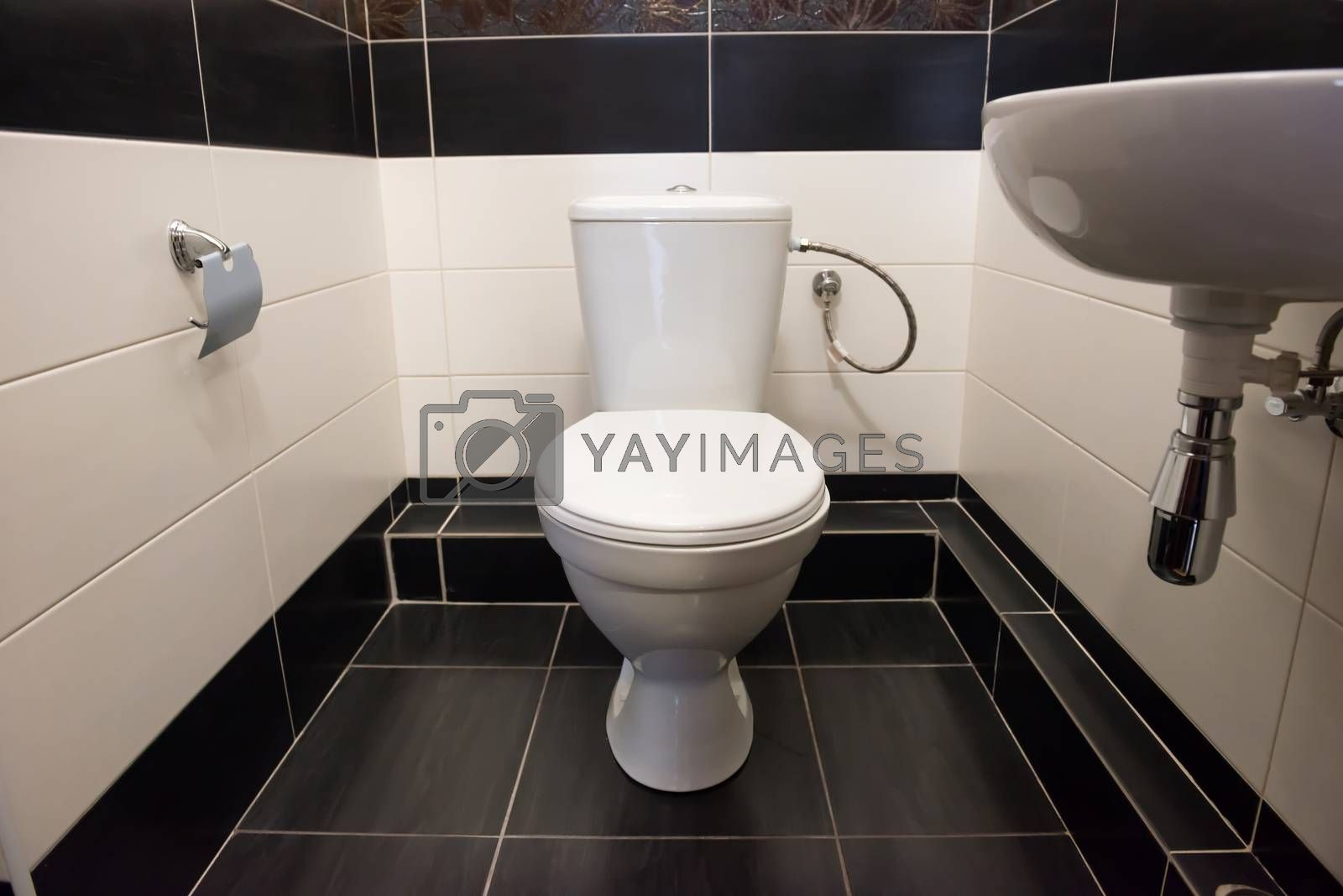 Interior of room at home flush toilet with bowl and sink.