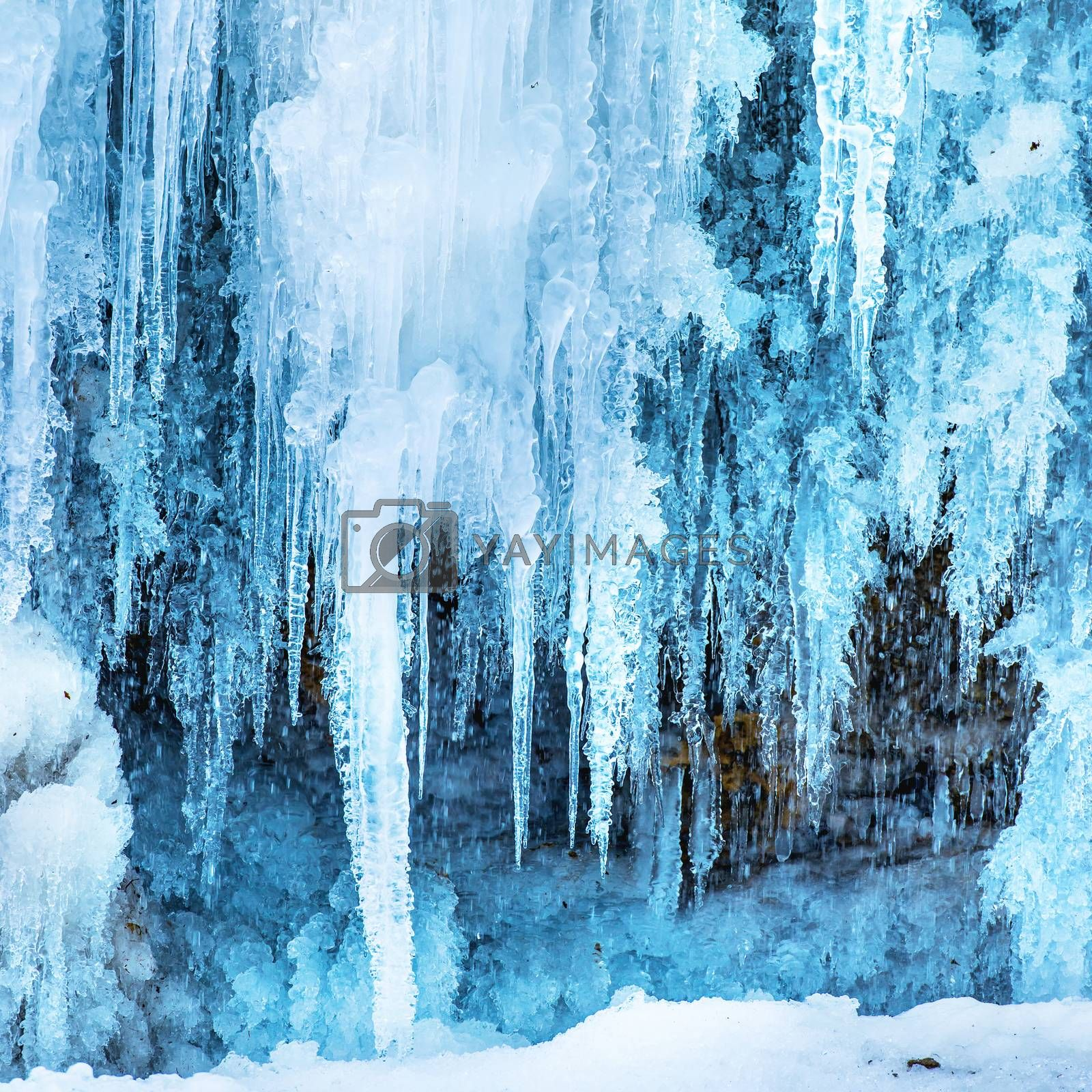 Frozen ice waterfall of blue icicles on the rock