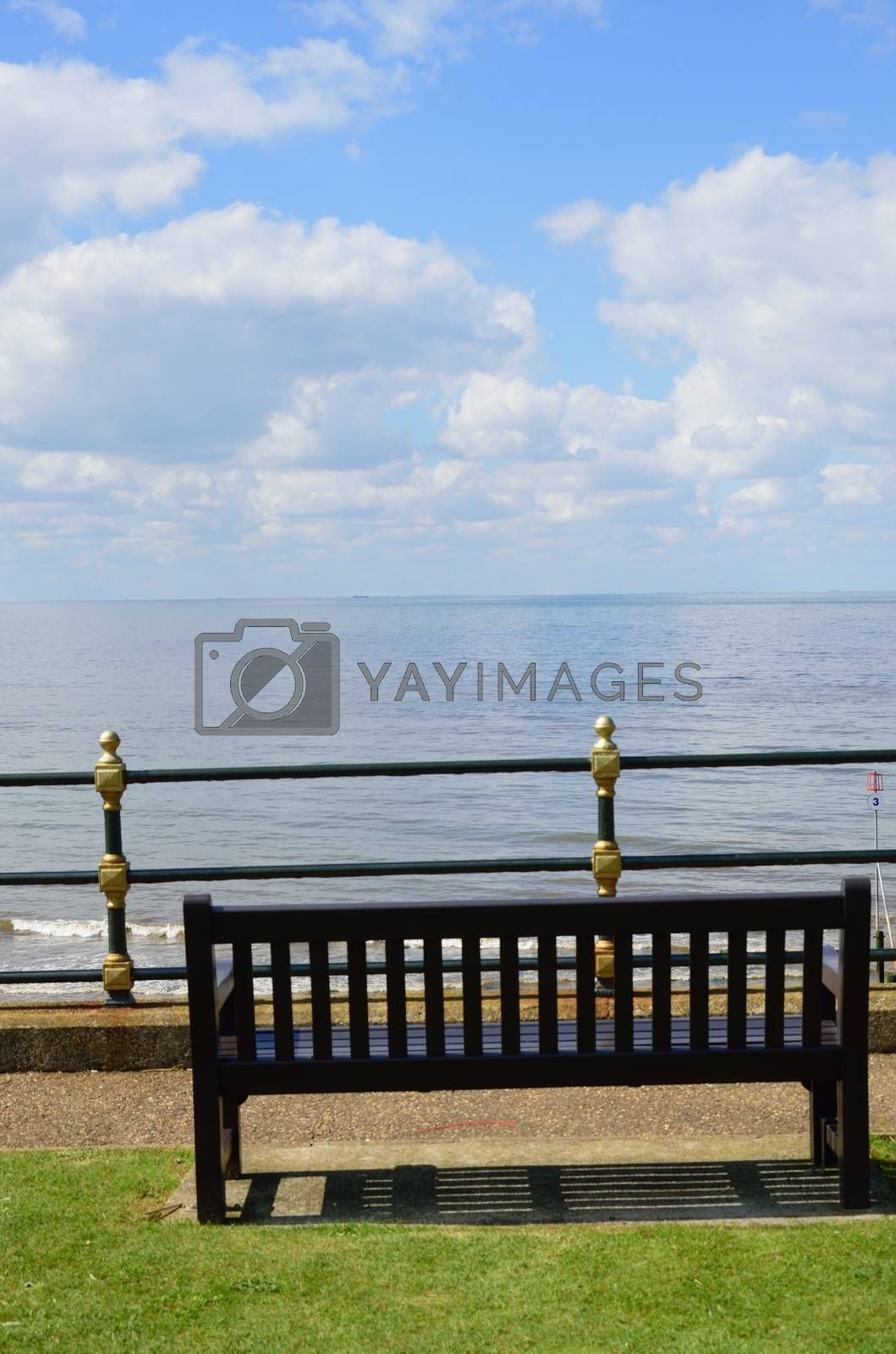 Bench overlooking sea