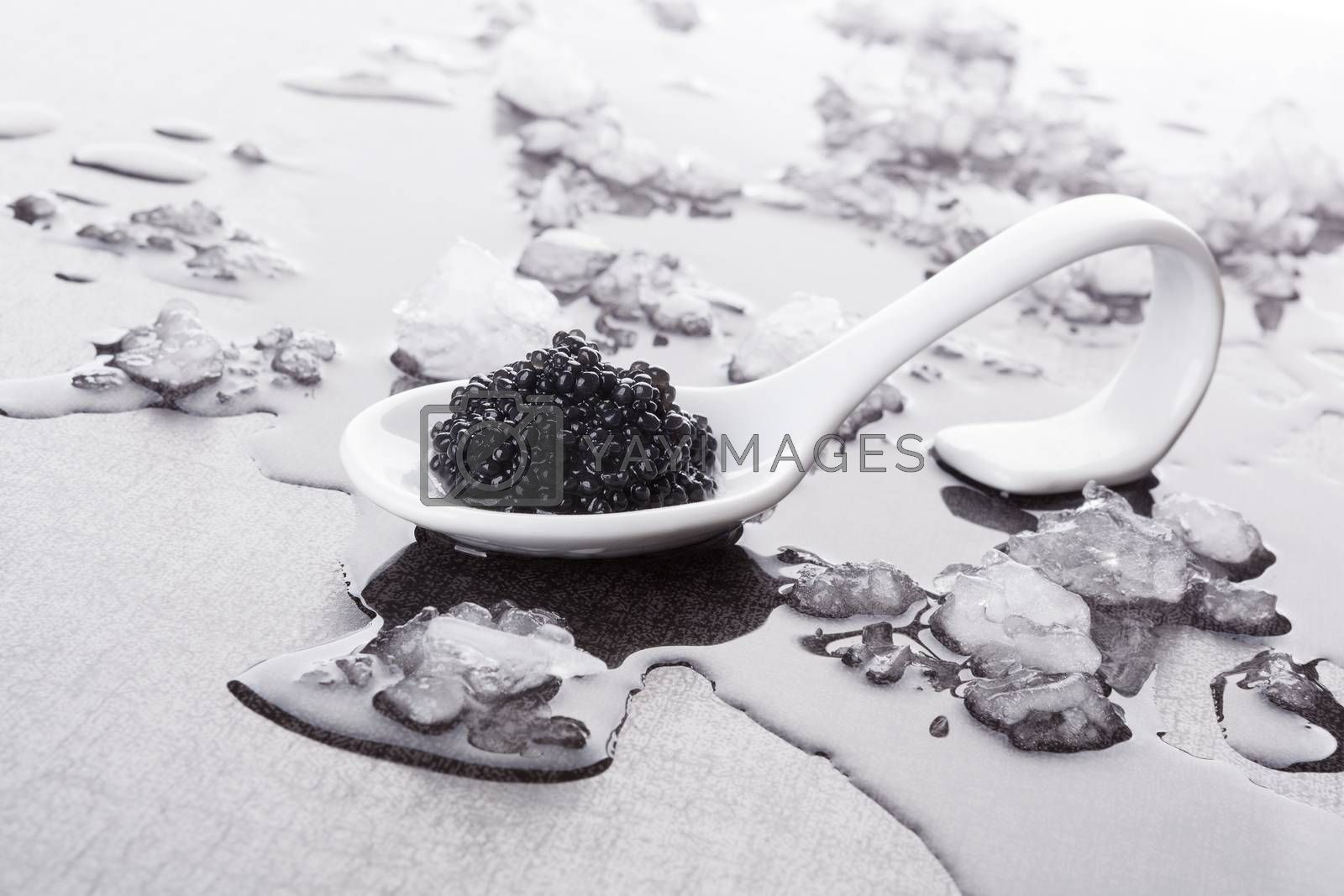 Black caviar on white spoon on ice. Luxurious culinary delicacy, traditional russian black caviar.