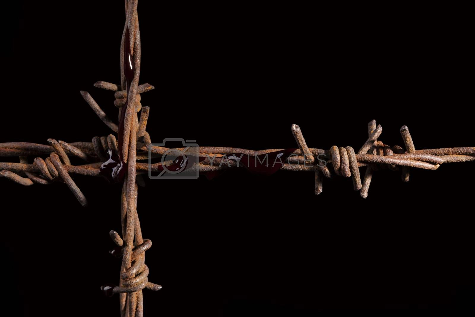 Rusty barb wire cross isolated on black background. Religious wars.