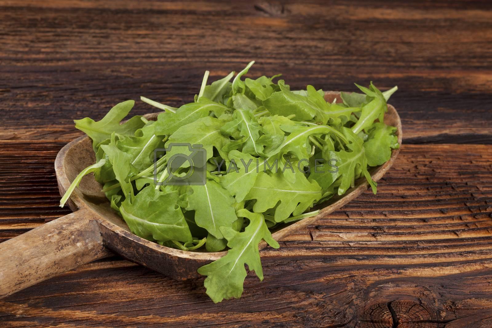 Fresh arugula salad. by eskymaks