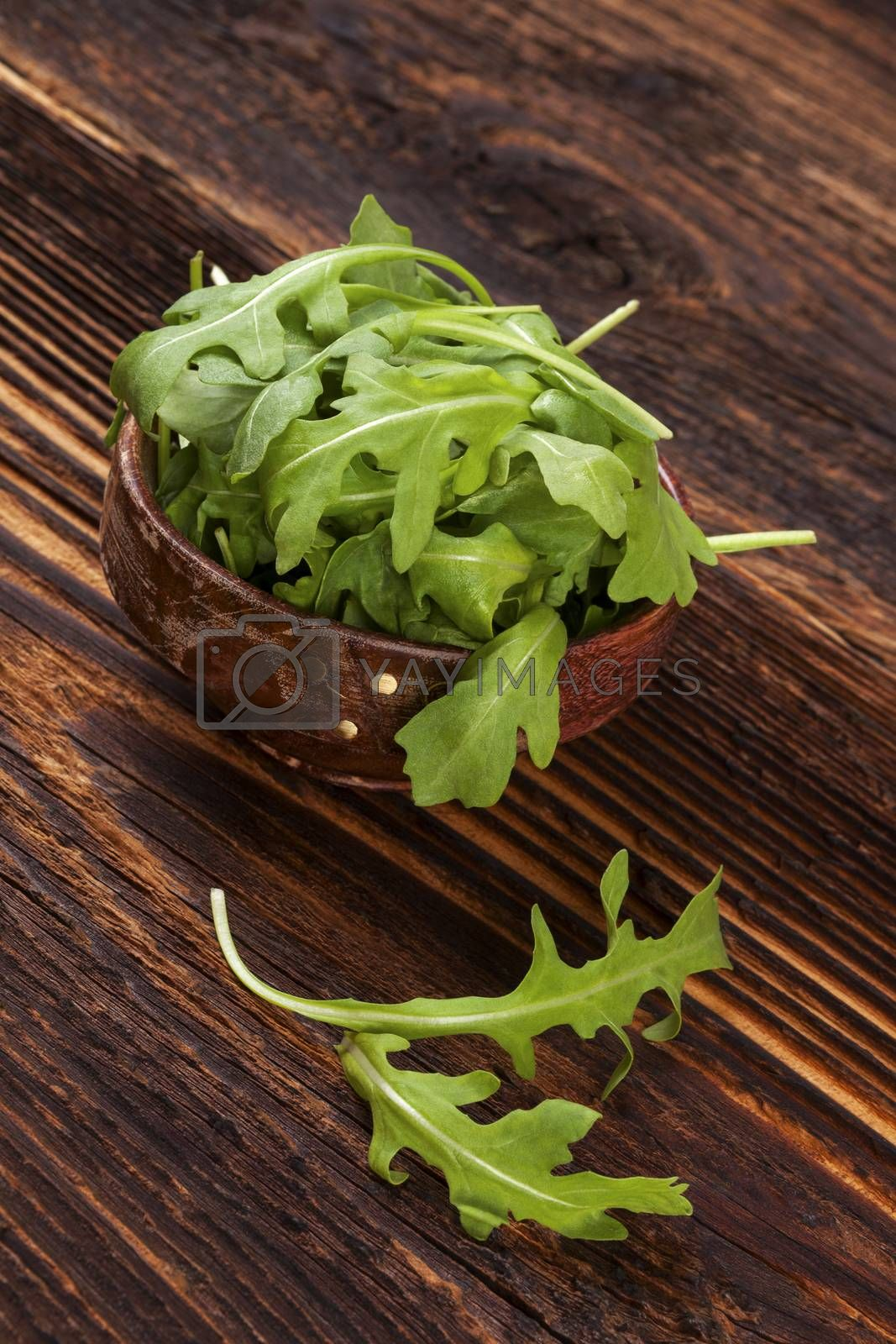 Fresh arugula salad in wooden bowl on wooden table. Healthy green salad eating.