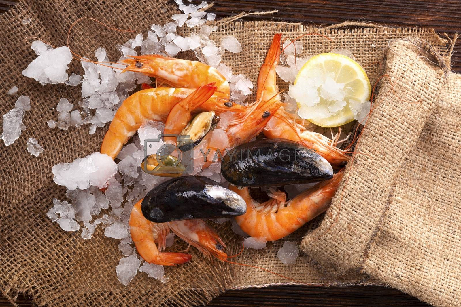 Fresh shrimp with lemon on ice in brown burlap bag on wooden table, top view. Culinary seafood eating.