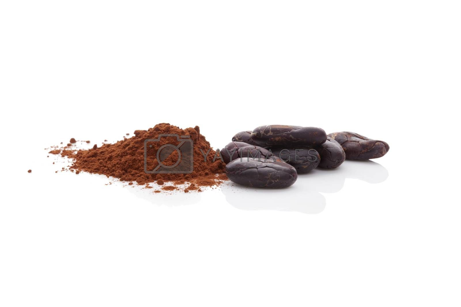 Cocoa beans and cocoa powder. by eskymaks