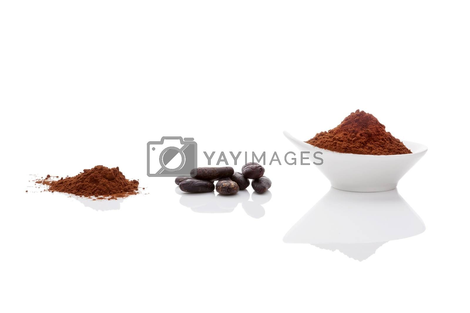 Cocoa beans and cocoa powder on white background. Healthy superfood.