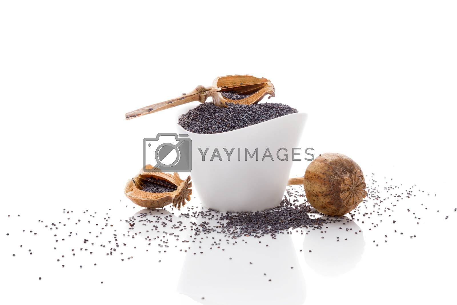 Poppy seeds in white bowl isolated on white background.