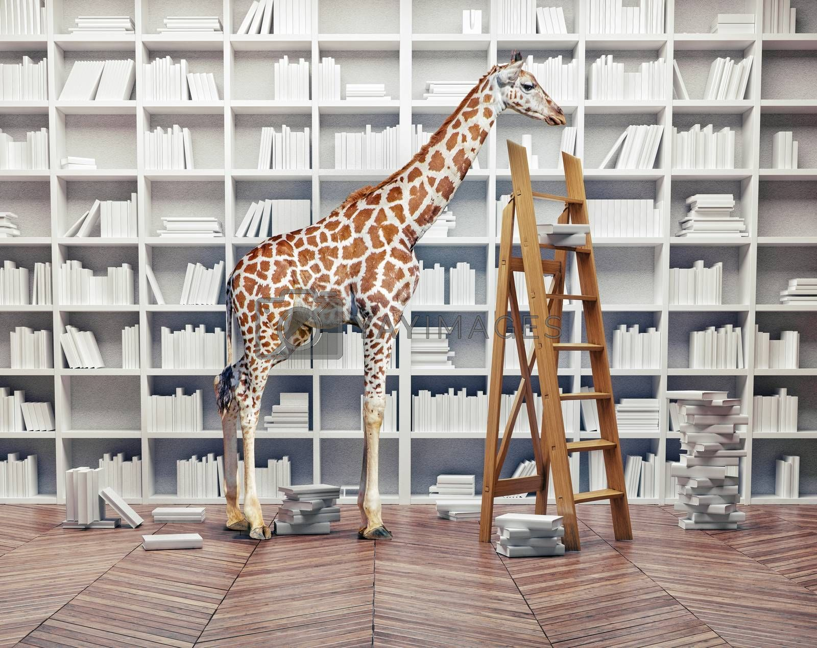 an giraffe baby  in the room with book shelves. Creative concept
