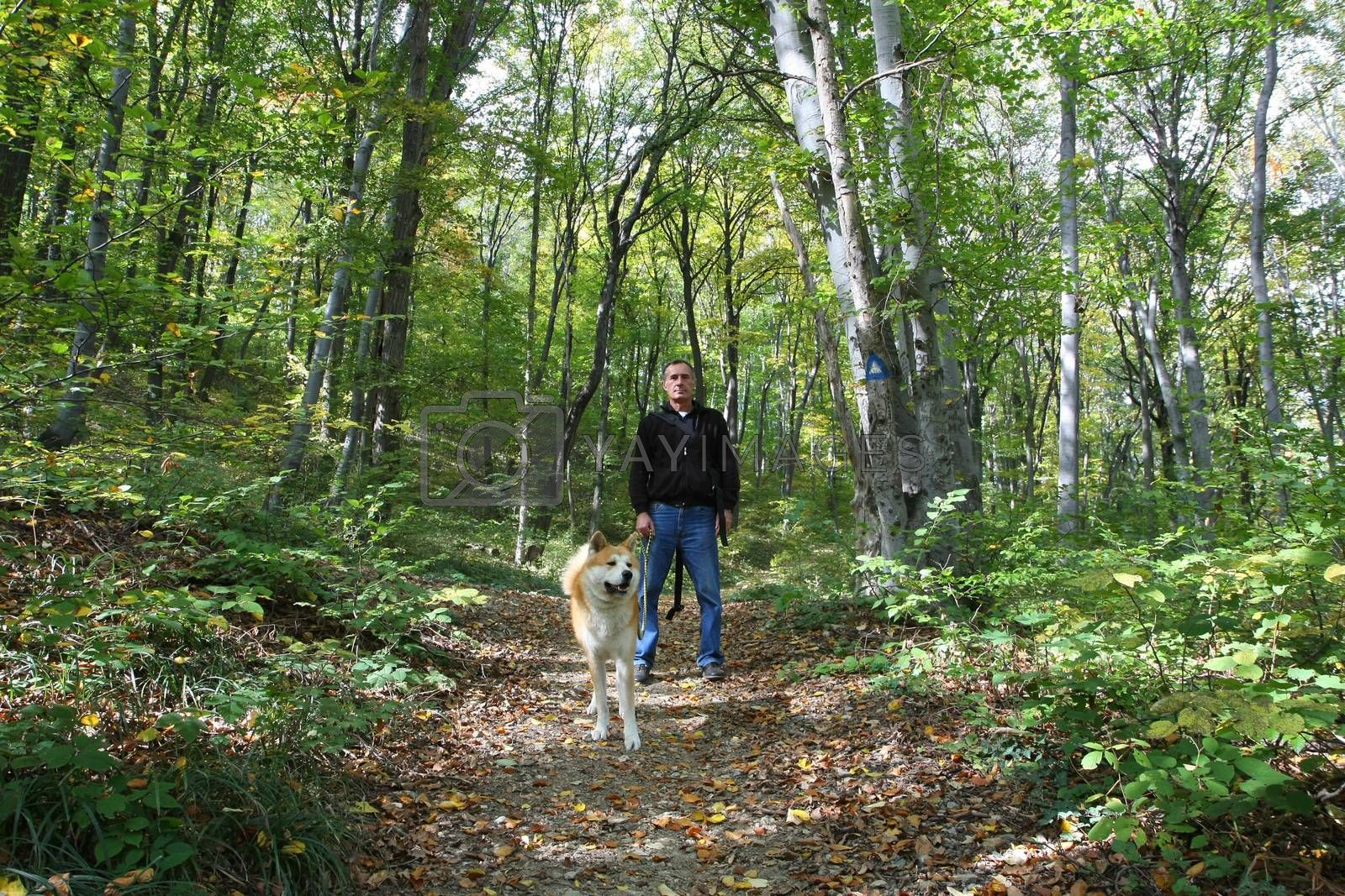 Man and dog enjoying in the forest by tdjoric
