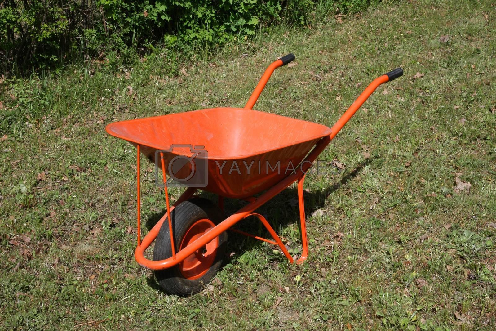 Vivid Orange handwagon in the field
