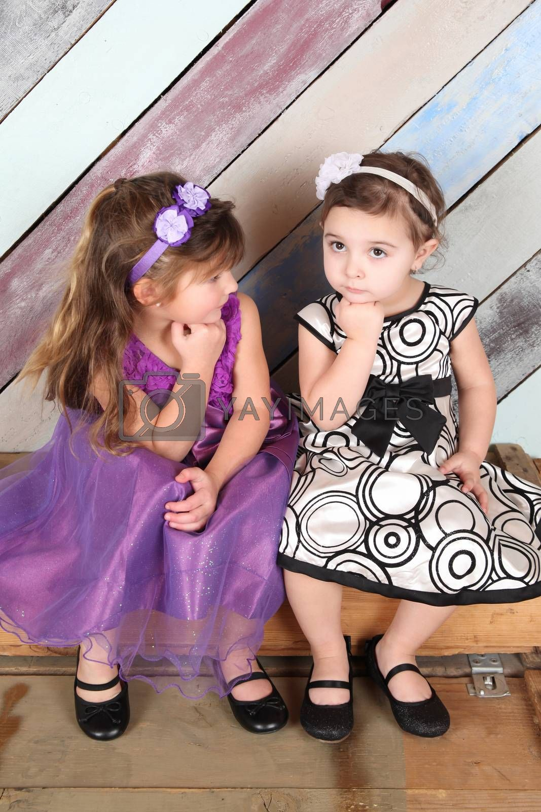 Brunette toddler friends against a colorful background
