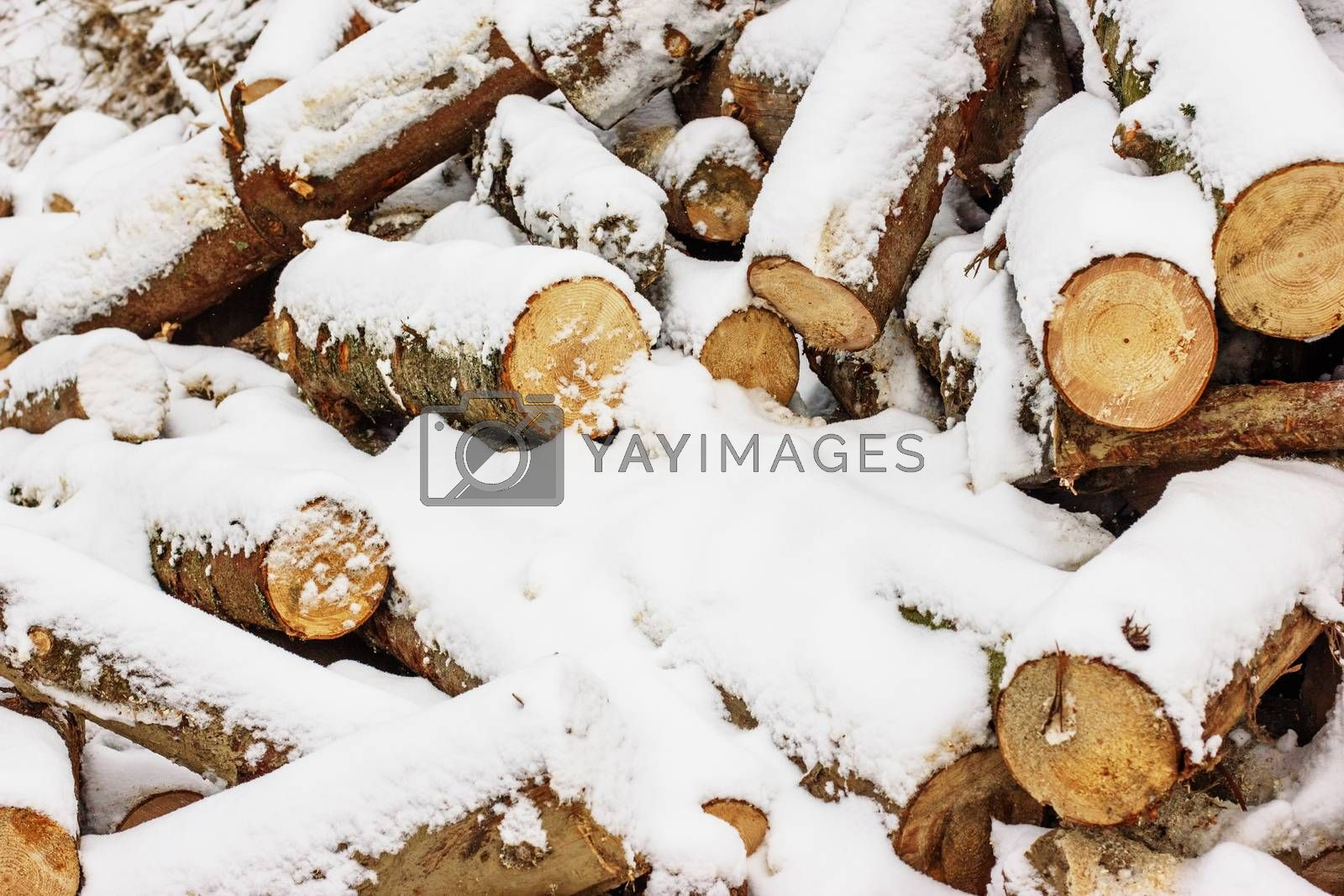 The stack of the snowy firewood on old wooden background. Wood pieces, tree chops stored outdoors for fireplace or mantel, texture or background.