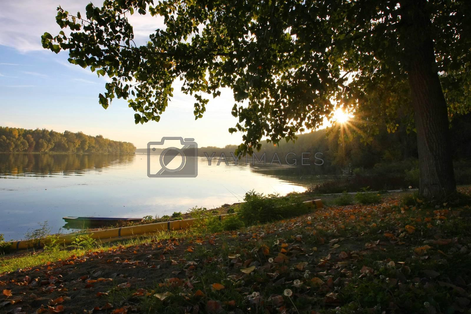 Beautiful nature around Sava river close to Belgrade,Serbia