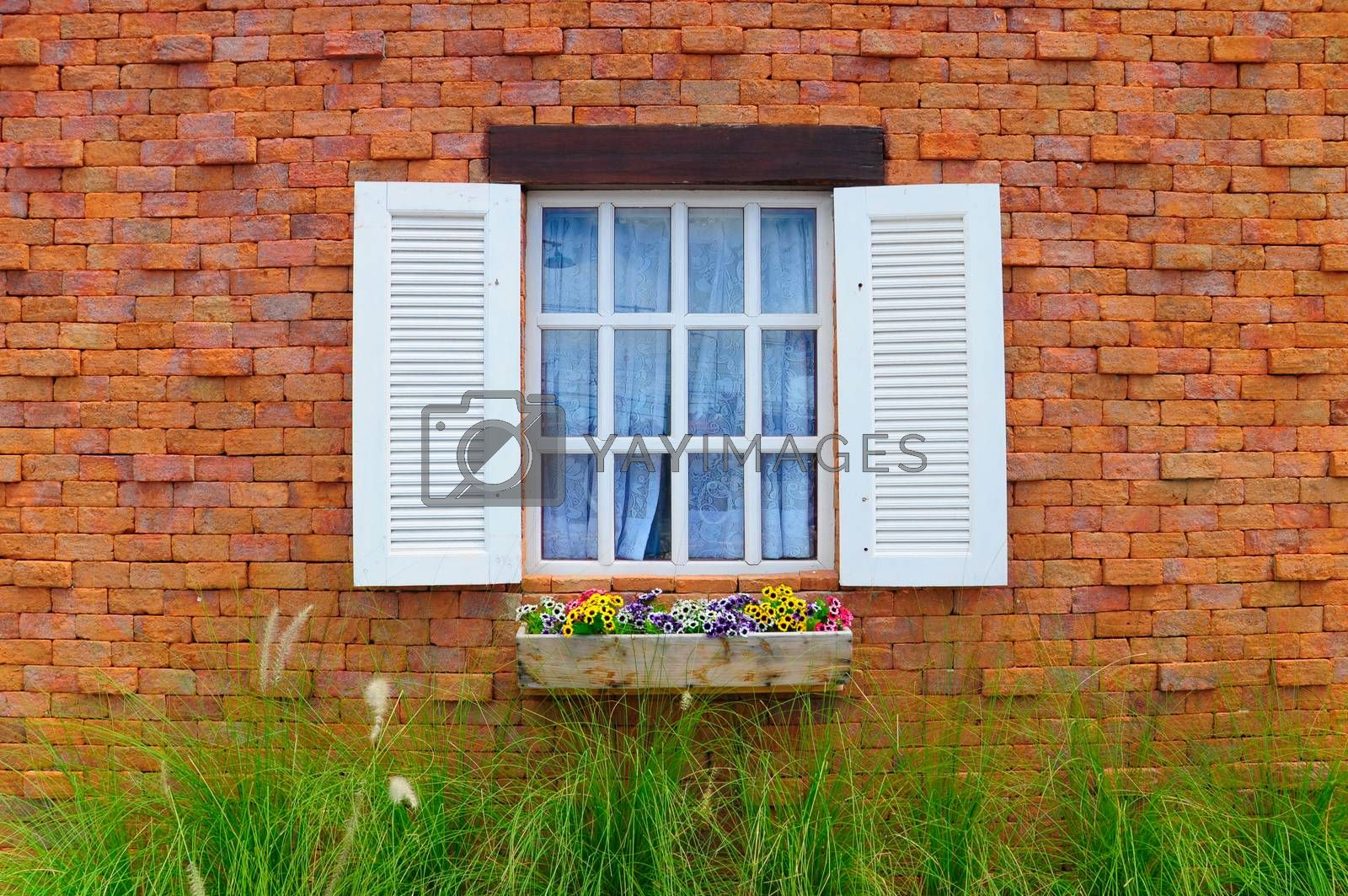 Vintage romance window field