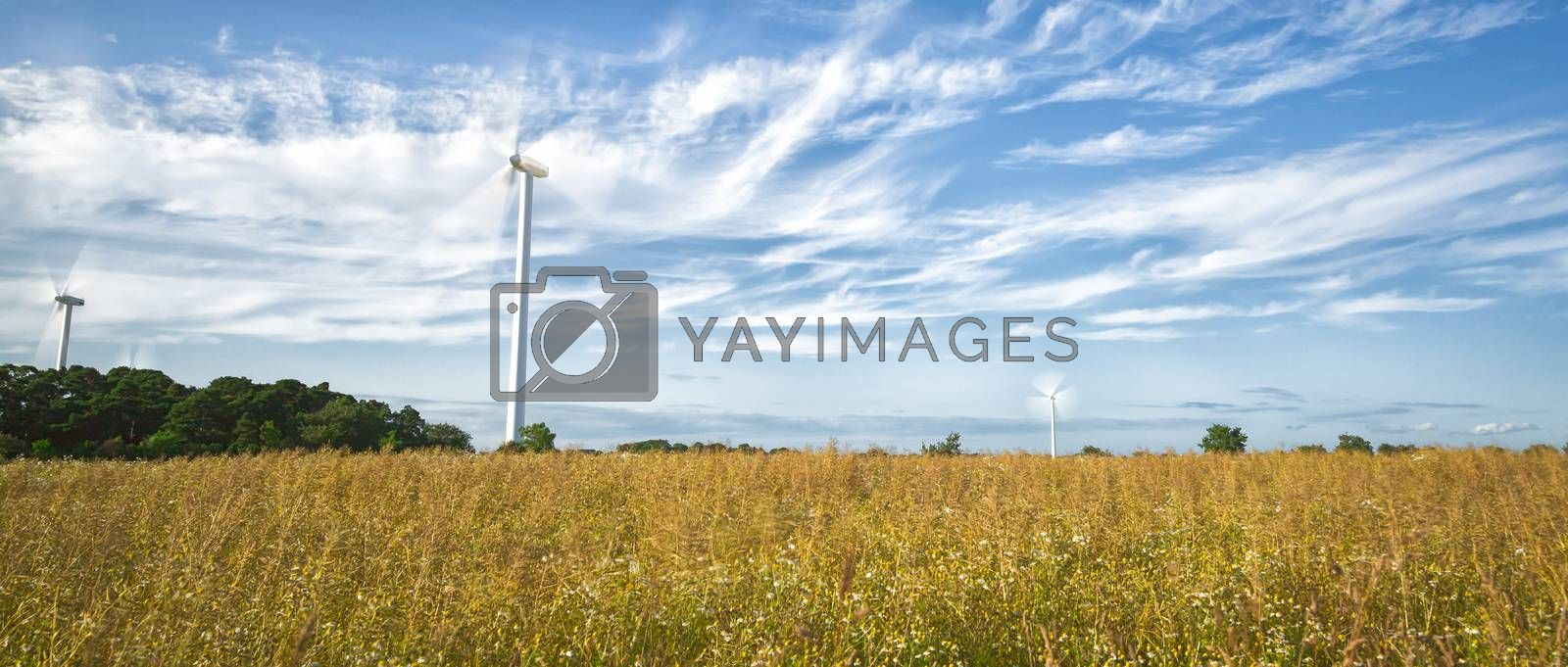 Wind Power Stations in Field with a partly cloudy sky.