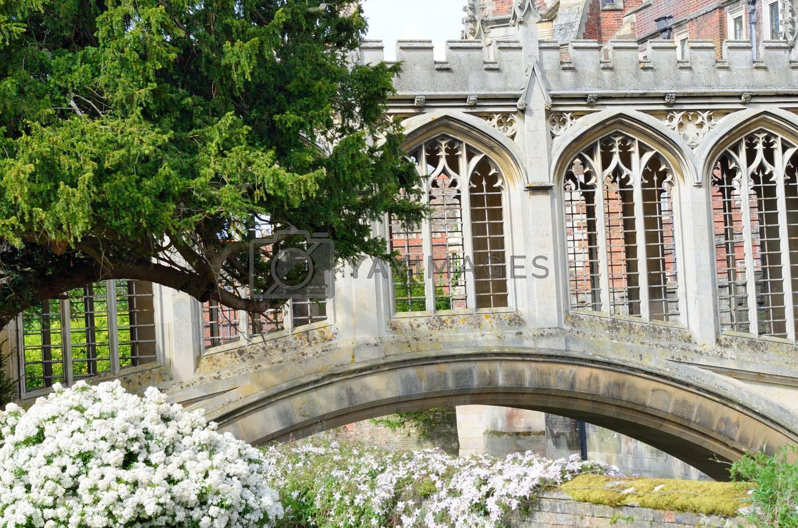 Bridge of Sighs Cambridge