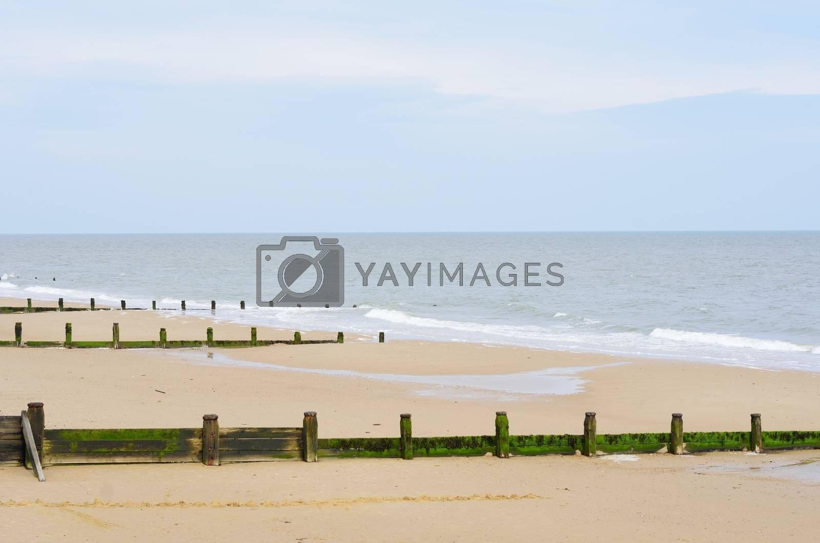 Sandy beach with breakwaters