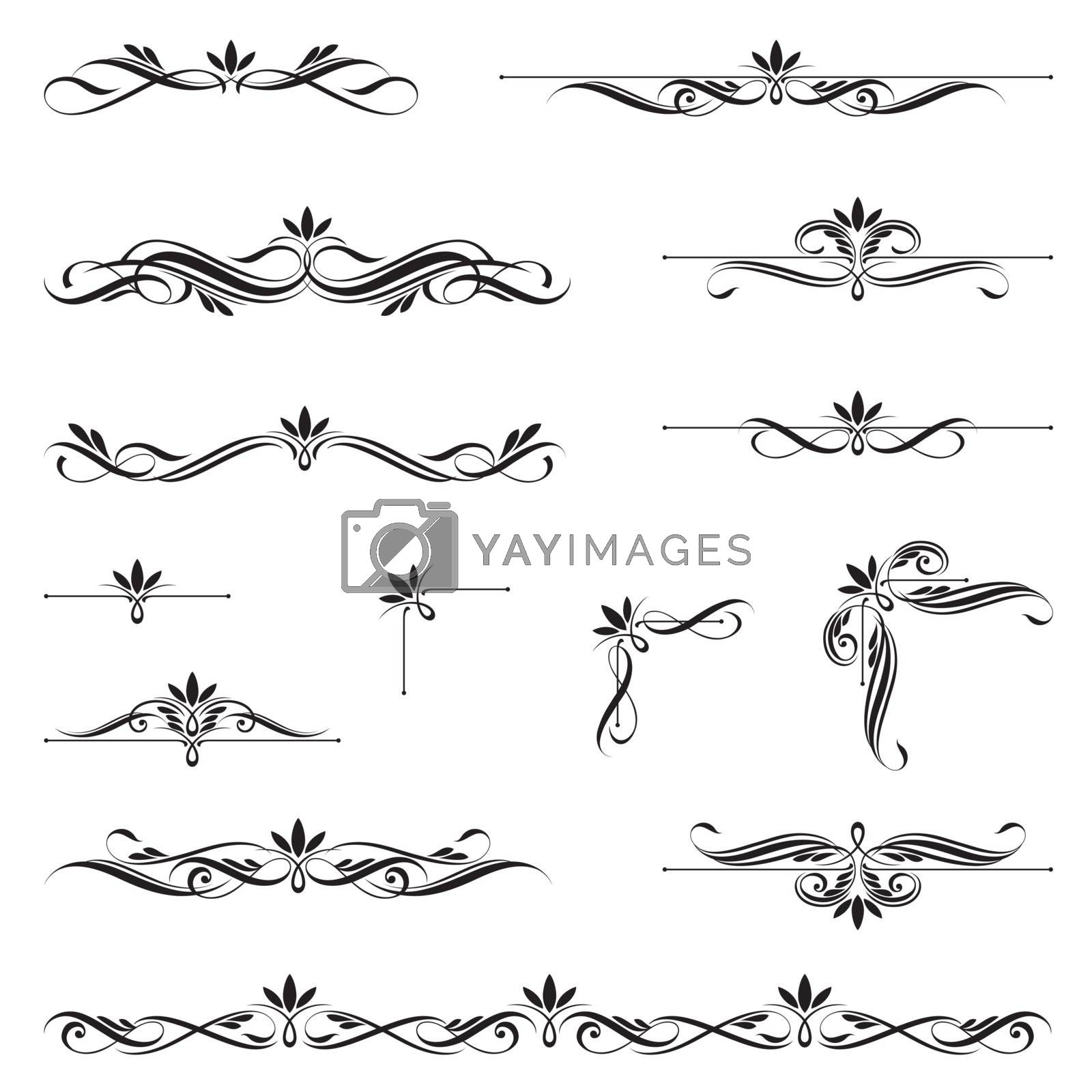 Set of Calligraphic Elements. This image is a vector illustration.