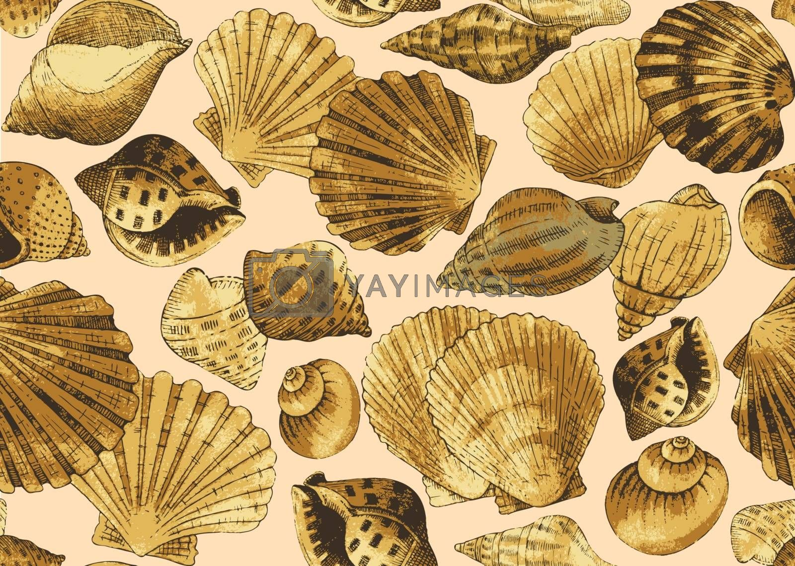 Seashells. Seamless background