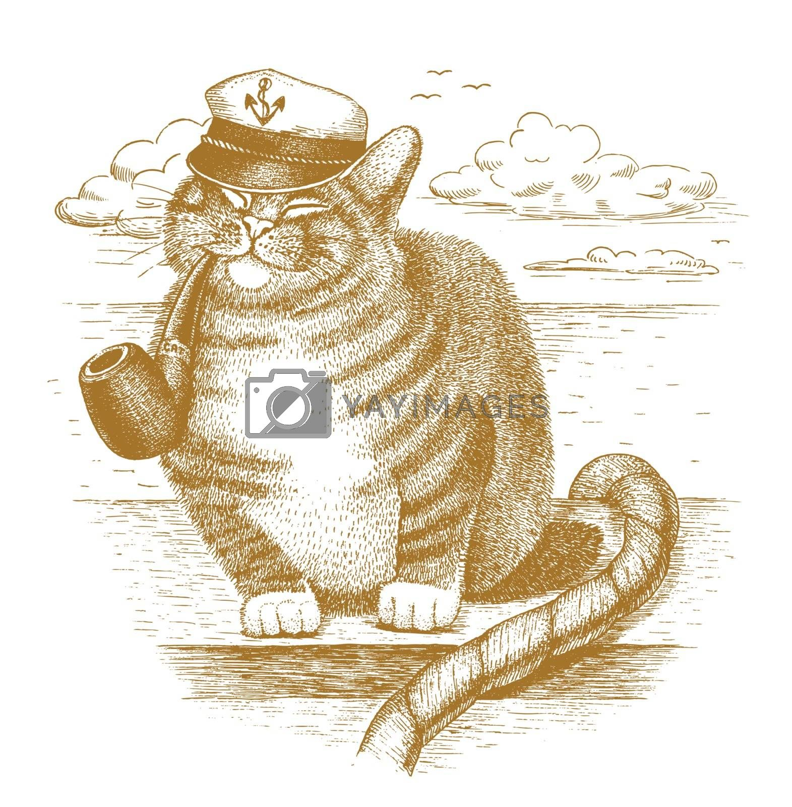 Cat captain drawn by hand