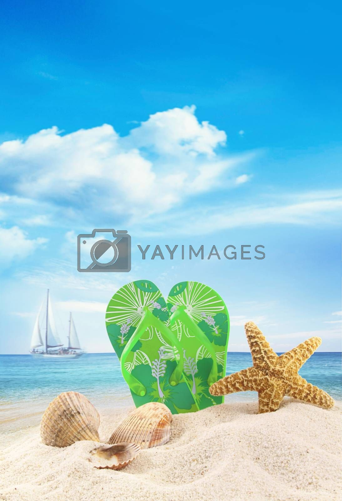 Sandals and seashells in the sand at the ocean